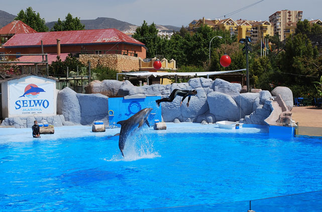 Excursions for children in the Costa del Sol